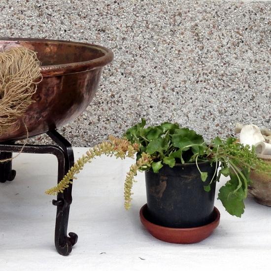 O branqueo (blanqueado)