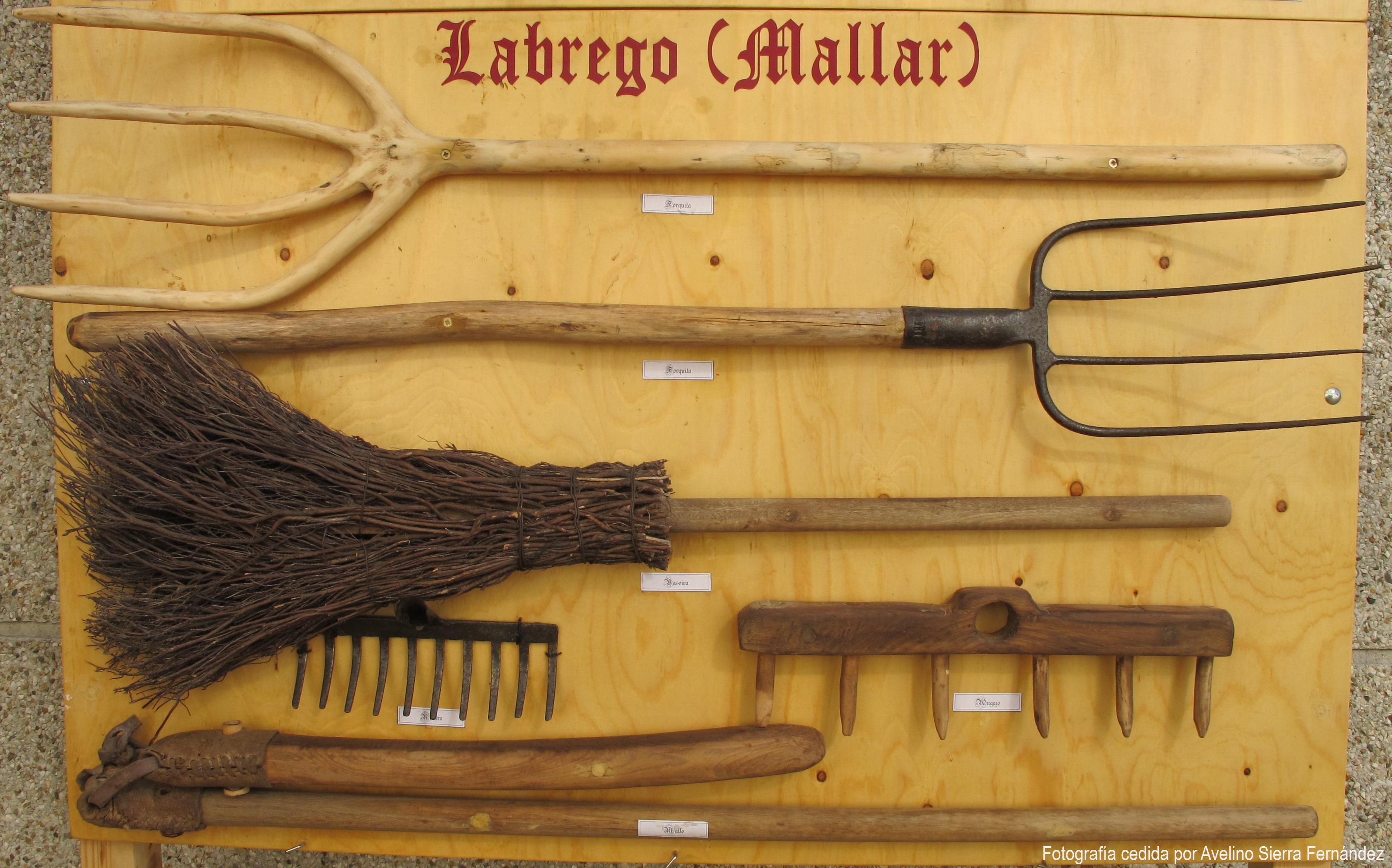 5 Labrego - Mallar