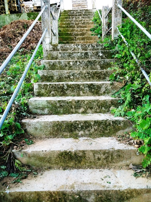 escaleira